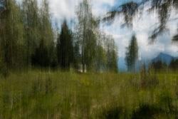 Experimentelle-Fotografie_Svetlana-Malinina-3