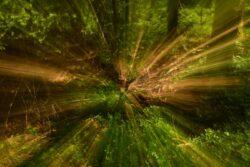 experimenteslles-fotografieren_Daniel-steiger_2020-2